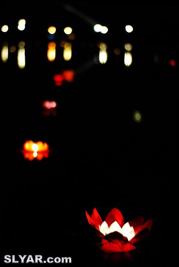 丽泽湖河灯